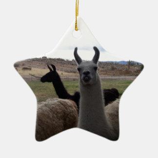 Llamas Ceramic Star Ornament
