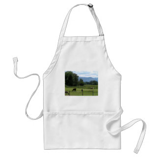 Llamas pastured in a mountain valley standard apron