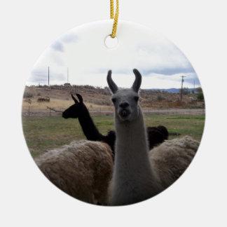 Llamas Round Ceramic Ornament