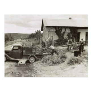 Loading a mower – 1940. postcard