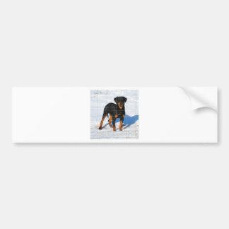 Lobo Rottweiler Bumper Sticker