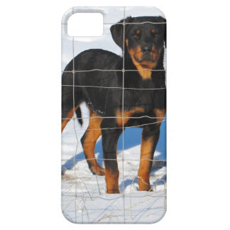 Lobo Rottweiler iPhone 5 Cover