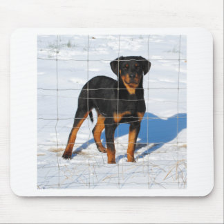 Lobo Rottweiler Mouse Pad