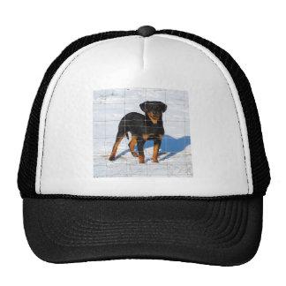 Lobo Rottweiler Trucker Hat