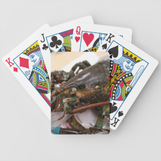 Lobster Bicycle Playing Cards