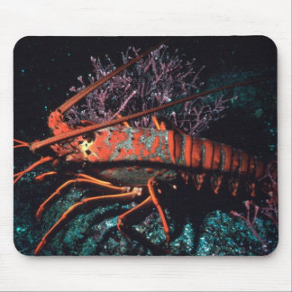 Lobster Crawling Mouse Pad
