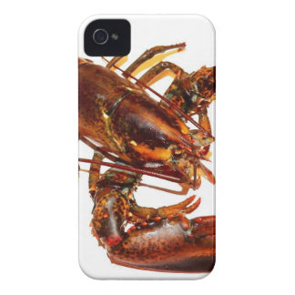 Lobster iPhone 4 Case-Mate Cases