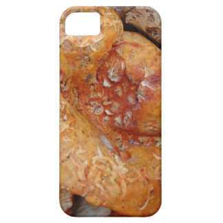Lobster Mushrooms Case For The iPhone 5