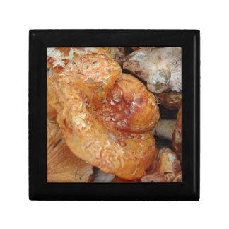 Lobster Mushrooms Keepsake Box