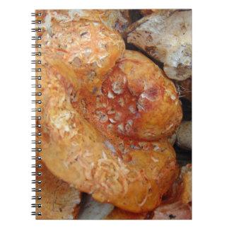 Lobster Mushrooms Notebook