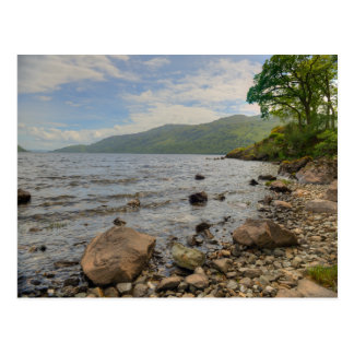 Loch Lomond Shoreline Landscape Postcard