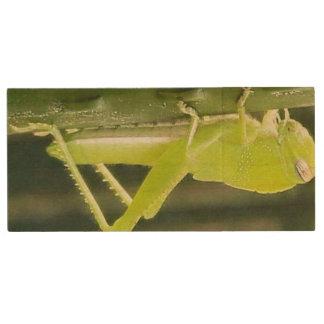 locust landscape jurassic usb key wood USB 3.0 flash drive
