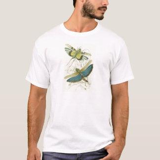 Locusta Cristata (lower), Locusta flava (upper) T-Shirt