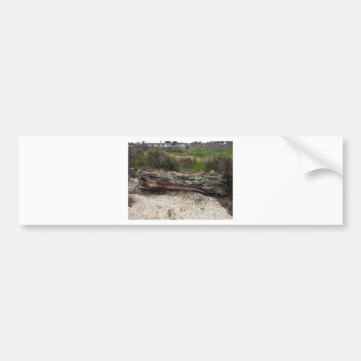 Log on the Beach Bumper Sticker