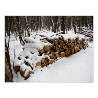 Log Pile in the Woods Poster