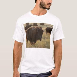 Logan County, Kansas Bison T-Shirt