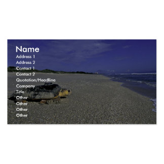 Loggerhead Sea Turtle at Archie Carr National Wild Business Card