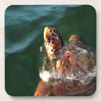 Loggerhead Turtle Coasters