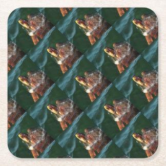 Loggerhead Turtle Square Paper Coaster