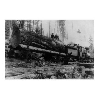 Logging Train carrying men and Poster