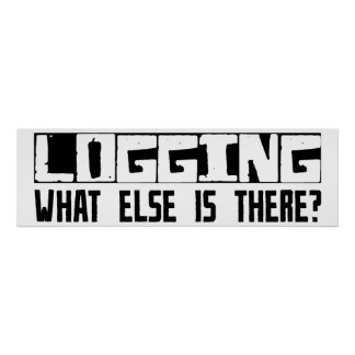 Logging What Else Is There? Poster