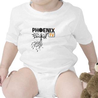 Logo de PhoenixTV Barboteuses