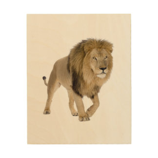 Loin image for Wood Wall Art