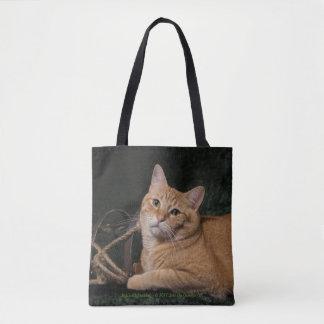 Loki with sled tote bag