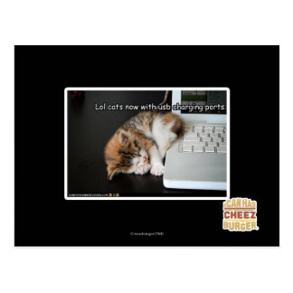 Lol cats with USB Postcard