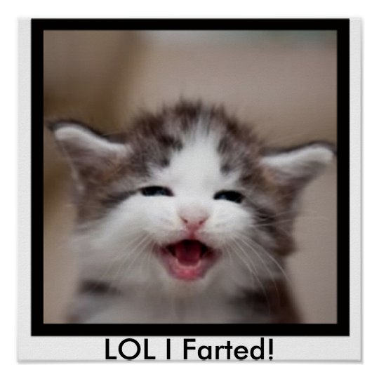 LOL I Farted! Poster