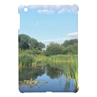 London - UK Pond iPad Mini Case