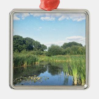 London - UK Pond Metal Ornament