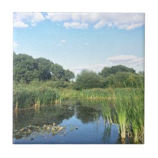 London - UK Pond Tile