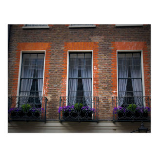 London Window Flower Boxes Postcard