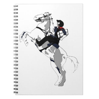 Lone Arranger, for Archivists Working Alone! Notebooks