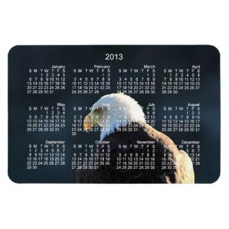 Lone Bald Eagle; 2013 Calendar Magnet