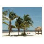 Lone Beach At Fort Myers Beach Florida Postcard
