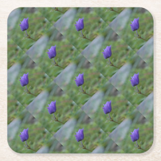 Lone Blue-Purple Anemone Square Paper Coaster