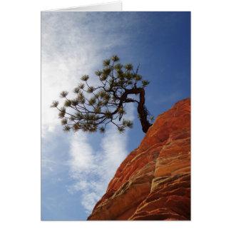 Lone Bonsai Tree Sky Zion National Park Utah Blank Card