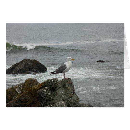 Lone gull card