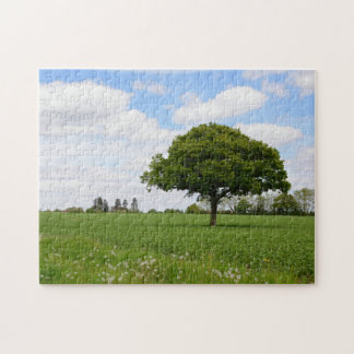 Lone oak tree in the countryside jigsaw puzzle