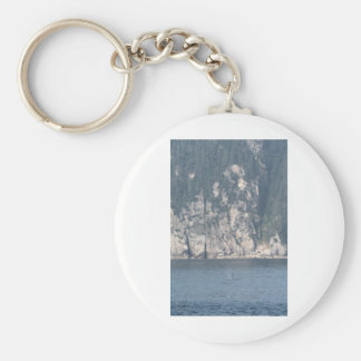 Lone Orca scene Basic Round Button Keychain