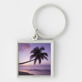 Lone palm tree at sunset, Coconut Grove beach 2 Silver-Colored Square Keychain