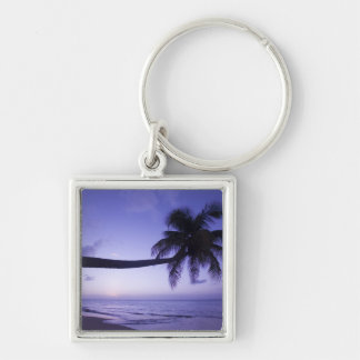 Lone palm tree at sunset, Coconut Grove beach 3 Silver-Colored Square Keychain