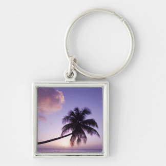 Lone palm tree at sunset, Coconut Grove beach Silver-Colored Square Keychain