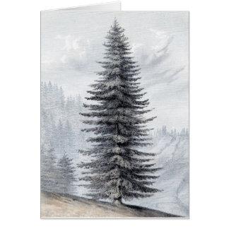 Lone Pine Card