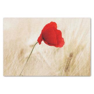 Lone Poppy Flower Tissue Paper
