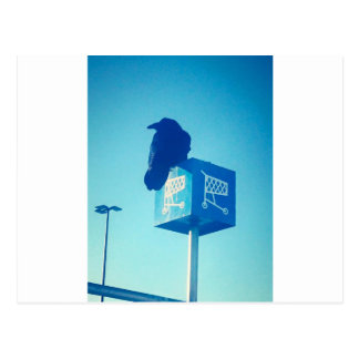 Lone Raven Walmart cart sign Postcard