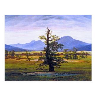 Lone Tree - by Caspar David Friedrich Postcard