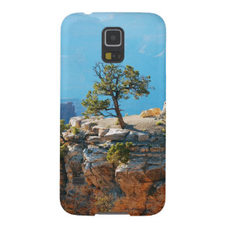 Lone tree in grand canyon galaxy s5 cases